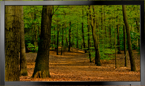 Desktop and Wall Mount Touch Screen Monitor